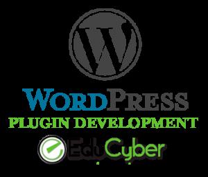 EduCyber Creates Custom Plugins for WordPress in Denver or anywhere