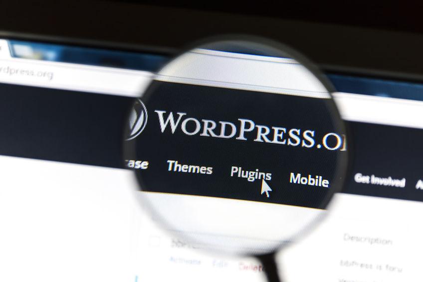 Wordpress Programming